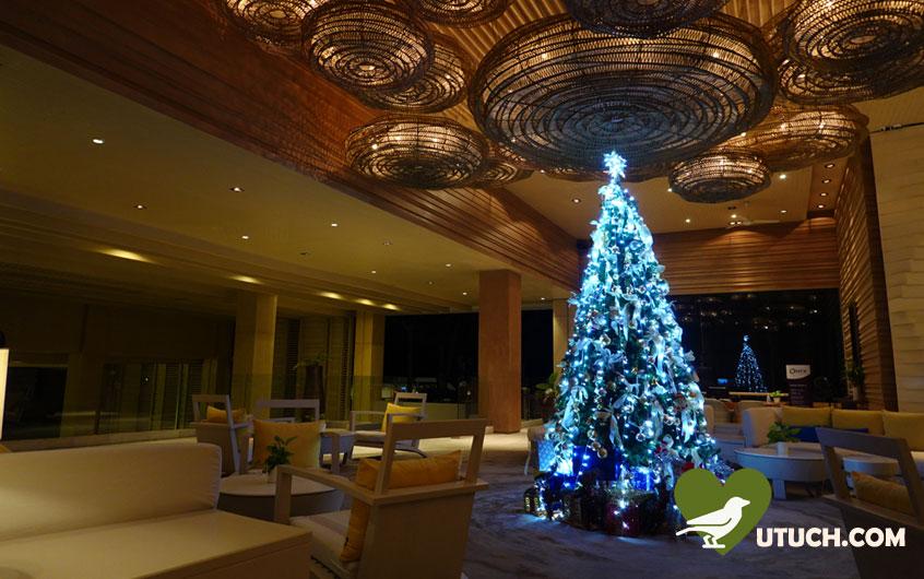 ระหว่างเดินทางกลับที่พัก มีไฟประดับสวยๆ เทศกาลคริสต์มาส นอนหลับฝันดีแล้ว